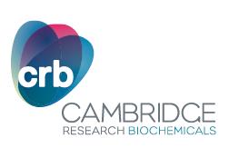 Cambridge Research B